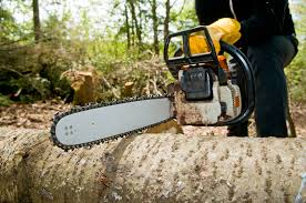 man using chainsaw